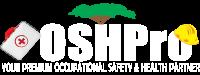 OSH Pro Services