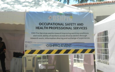 Trends and practices in occupational safety and health promotion 2021